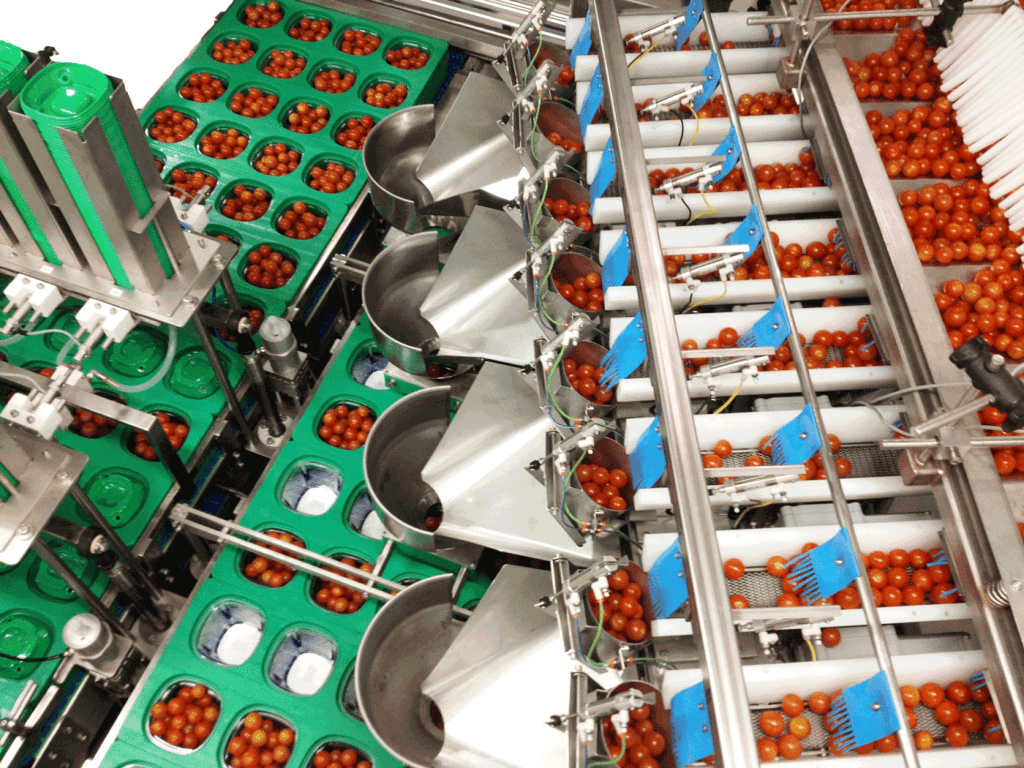 Fresh Produce Packaging Equipment – actionpac